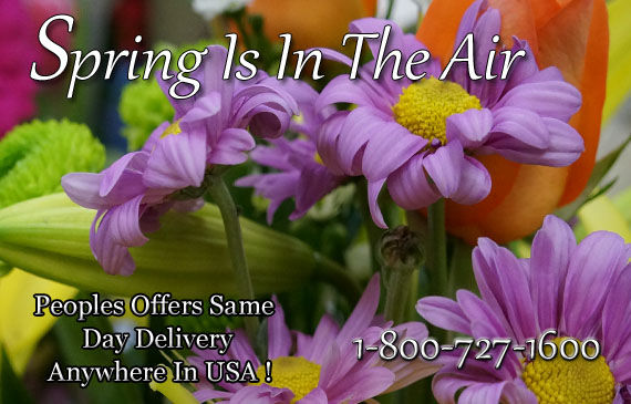 Spring Flowers - Peoples Flowers Offers Gorgeous Fresh Spring Flowers!