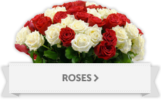 Red Roses, Colored Roses, Valentine's Day Rose arrangement