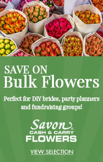 Buy Flowers in Bulk and Save!